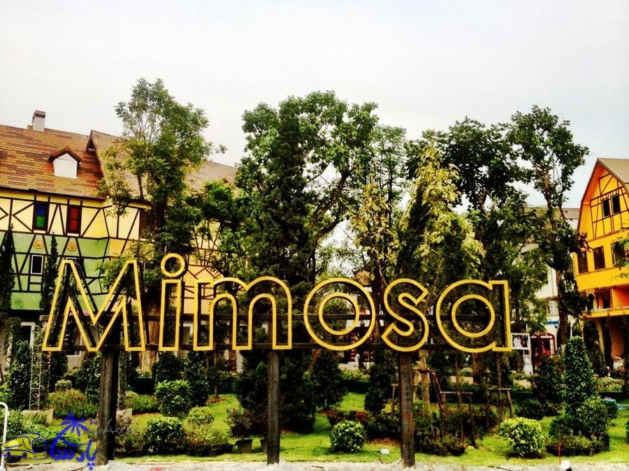 میم موسا (Mimosa)
