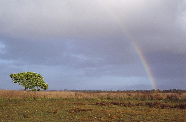 پارک ملی واسور