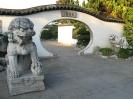 شانگهای - باغ گیاهشناسی