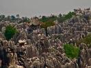 یوننان - جنگل سنگ (Stone Forest)