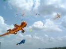 بالی - جشنواره کایت