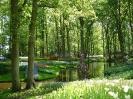 گچسر - باغ لاله ها -