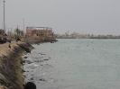 بوشهر - سواحل خلیج فارس_9