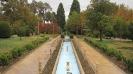 شیراز - باغ ارم -
