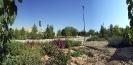 شیراز - پارک نور _1