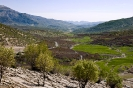 شیراز - کوهمره سرخی -