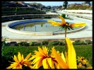 پارک ملت گرگان_2