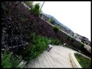 پارک ملت گرگان_5