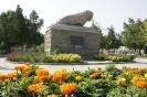 مجسمه شیر سنگی_2