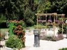باغ گلها_28