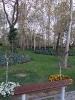 باغ گلها_3