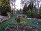 باغ گلها_6
