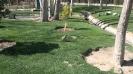 باغ پرندگان_82
