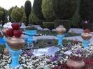 باغ غدیر_1
