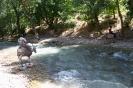 آبشار آب ملخ_6