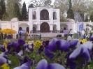 باغ شاهزاده_16