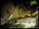 پارک کوهستان_4