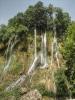 آبشار بیشه_20
