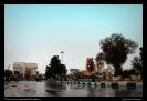 میدان باغ ملی_3