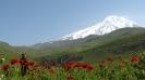 آمل - قله دماوند - _5