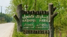 نور - پارک جنگلی کشپل -