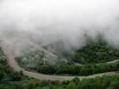 سوادکوه - جنگل عباسعلی _2