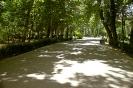 تهران - پارک شهر -