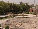 باغ مینیاتوری -