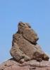 مهریز - کوه ریگ -