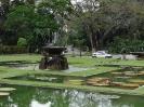 پنانگ - باغ گیاه شناسی -