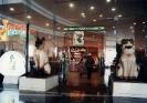 کوچینگ - موزه گربه