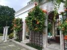 باغ گل ختمی (Hibiscus Garden)