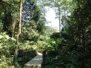 صباح - پارک ملي Kinabalu
