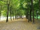استکهلم - پارک هوملگاردن
