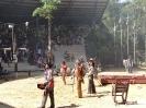 باغ وحش سافاری - _16