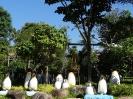 تایلند - پاتایا - باغ گیاهشناسی نانگ نوچ_13