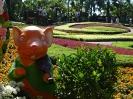 تایلند - پاتایا - باغ گیاهشناسی نانگ نوچ_19