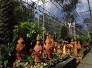 تایلند - پاتایا - باغ گیاهشناسی نانگ نوچ_24