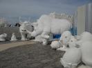 یخ جادویی سیام (Frost Magical Ice of Siam)_12