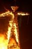 آمریکا- جشن Burning Man