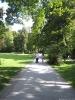 مونیخ - باغ انگلیسی