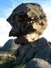 پاولودار - پارک ملی بایانول